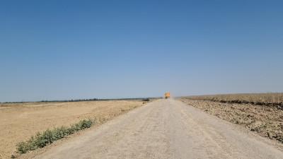 Алматинская обл, р-н Карасай, Алматинская область, Карасайский район, Ассоциация крестьянских хозяйств «КазМИС»