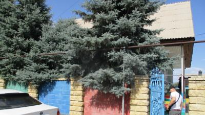 Алматинская обл, р-н Талгар, село Панфилово, улица Жетысуйская, дом 5