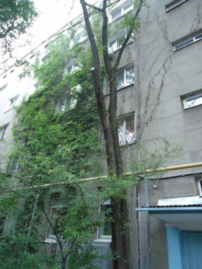 Алматы, р-н Алмалы, ул. Жарокова, д. 91, кв. 38